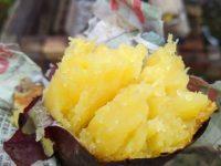 焼き芋会1
